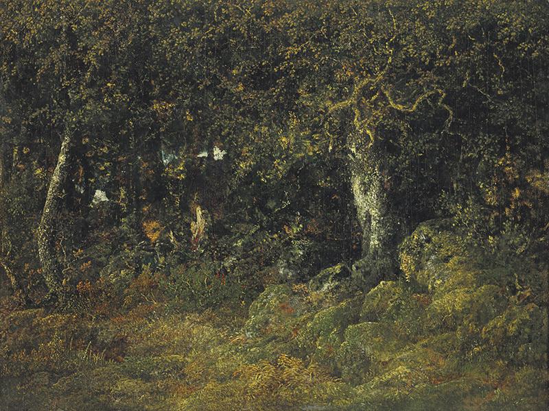 Glyptoteket erhvervede i 2018 værket 'Le chêne de roche' (Klippeegen), malet i 1860 af den franske kunstner Théodore Rousseau. Maleriet er skænket af Ny Carlsbergfondet.